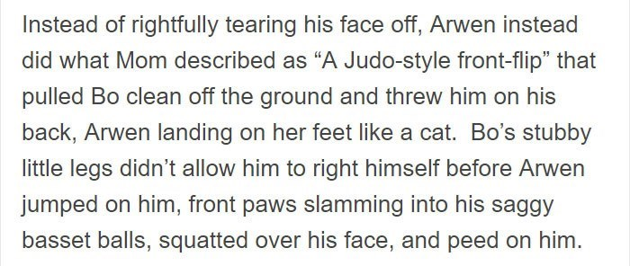 """Text - Instead of rightfully tearing his face off, Arwen instead did what Mom described as """"A Judo-style front-flip"""" that pulled Bo clean off the ground and threw him on his back, Arwen landing on her feet like a cat. Bo's stubby little legs didn't allow him to right himself before Arwen jumped on him, front paws slamming into his saggy basset balls, squatted over his face, and peed on him."""