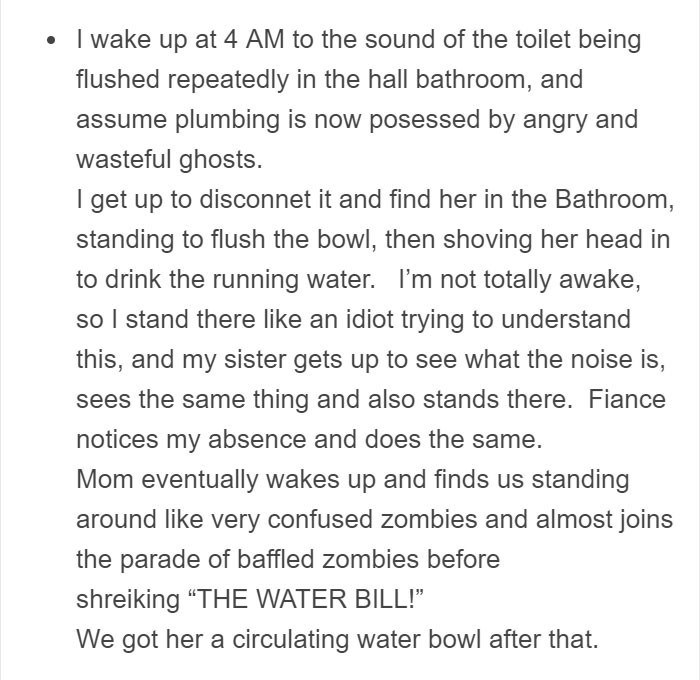 Text - wake up at 4 AM to the sound of the toilet being flushed repeatedly in the hall bathroom, and assume plumbing is now posessed by angry and wasteful ghosts. I get up to disconnet it and find her in the Bathroom, standing to flush the bowl, then shoving her head in to drink the running water. I'm not totally awake, so I stand there like an idiot trying to understand this, and my sister gets up to see what the noise is, sees the same thing and also stands there. Fiance notices my absence and