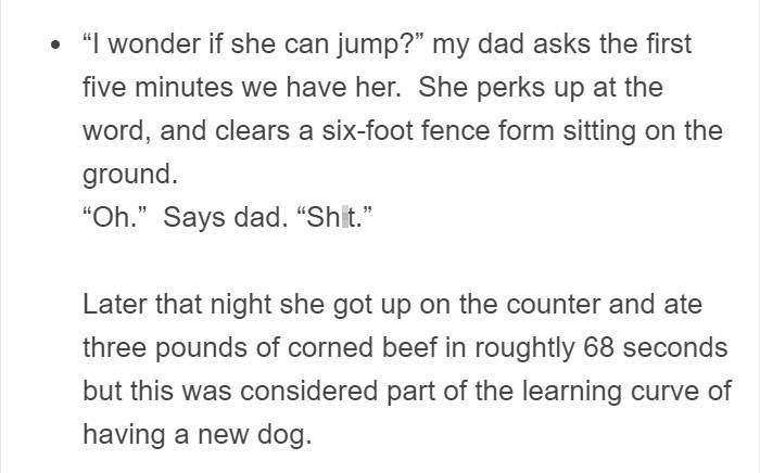 """Text - """"Iwonder if she can jump?"""" my dad asks the first five minutes we have her. She perks up at the word, and clears a six-foot fence form sitting on the ground. """"Oh."""" Says dad. """"Shit."""" Later that night she got up on the counter and ate three pounds of corned beef in roughtly 68 seconds but this was considered part of the learning curve of having a new dog"""