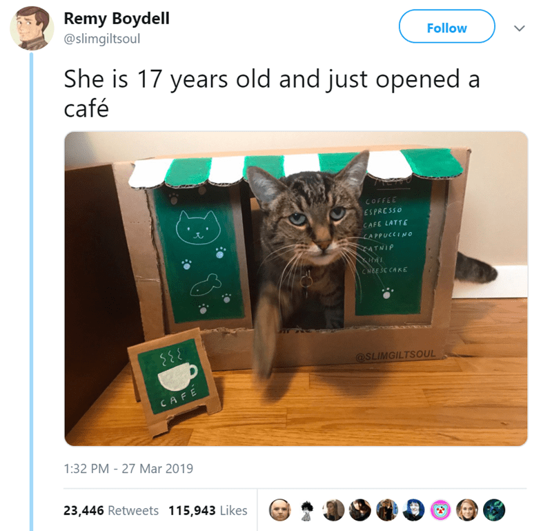 Cat - Remy Boydell @slimgiltsoul Follow She is 17 years old and just opened a café COFFEE ESPRESSO CAFE LATTE LAPPUCCINo MTNIP HAI CHEESE CAKE @SLIMGILTSOUL CAFE 1:32 PM - 27 Mar 2019 23,446 Retweets 115,943 Likes