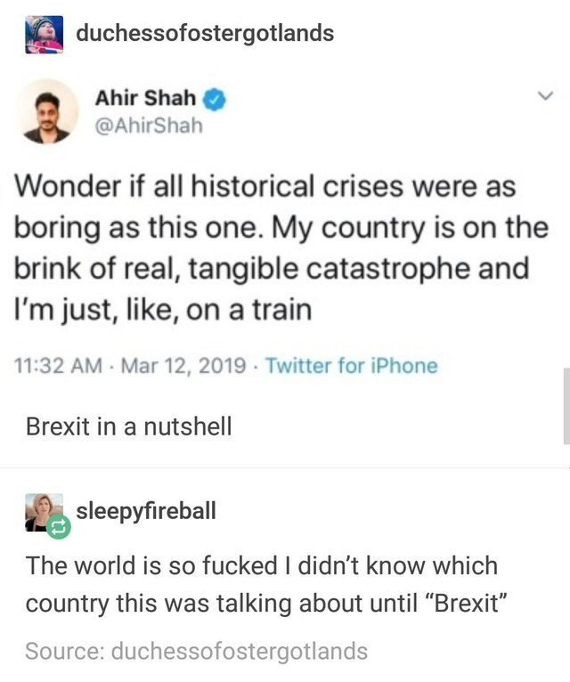"""Text - duchessofostergotlands Ahir Shah @AhirShah Wonder if all historical crises were as boring as this one. My country is on the brink of real, tangible catastrophe and I'm just, like, ona train 11:32 AM Mar 12, 2019 Twitter for iPhone Brexit in a nutshell sleepyfireball The world is so fucked I didn't know which country this was talking about until """"Brexit"""" Source: duchessofostergotlands"""