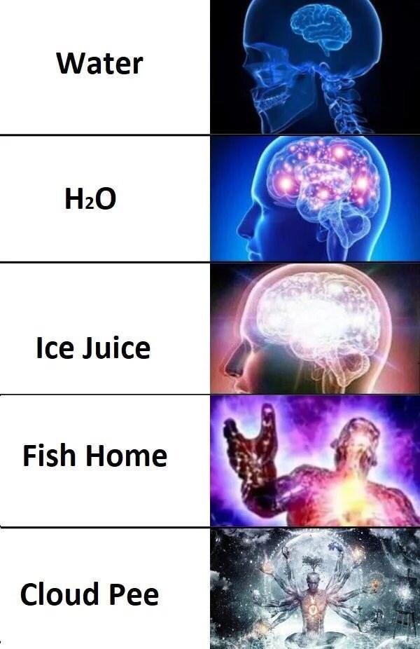 Organism - Water H20 Ice Juice Fish Home Cloud Pee