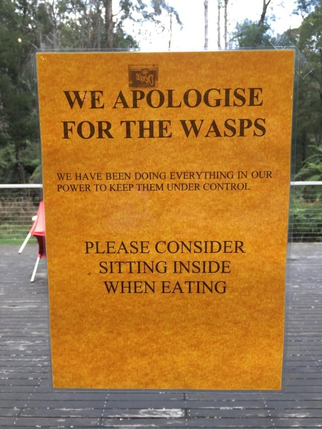 Text - WE APOLOGISE FOR THE WASPS WE HAVE BEEN DOING EVERYTHING IN OUR POWER TO KEEP THEM UNDER CONTROL PLEASE CONSIDER SITTING INSIDE WHEN EATING