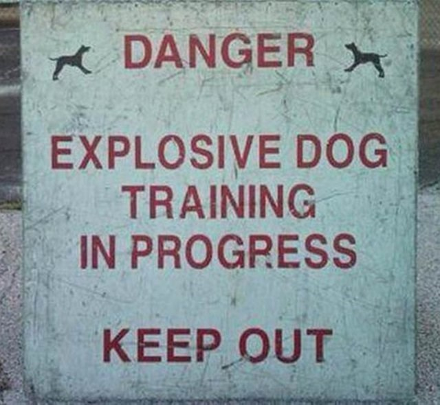Text - DANGER EXPLOSIVE DOG TRAINING IN PROGRESS KEEP OUT