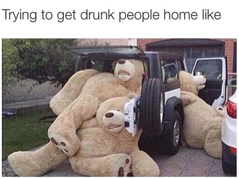 meme - Teddy bear - Trying to get drunk people home like