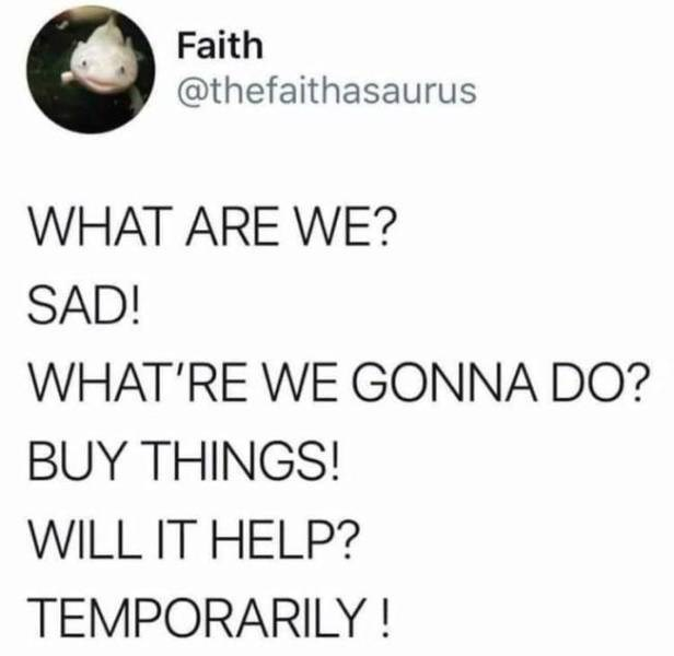 Text - Faith @thefaithasaurus WHAT ARE WE? SAD! WHAT'RE WE GONNA DO? BUY THINGS! WILL IT HELP? TEMPORARILY!