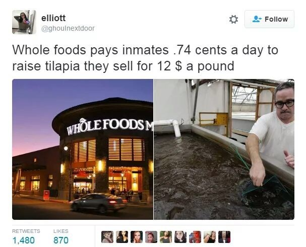 industrial prison complex - Product - elliott Follow @ghoulnextdoor Whole foods pays inmates .74 cents a day to raise tilapia they sell for 12 $ a pound WHOLE FOODSM RETWEETS LIKES 870 1,480