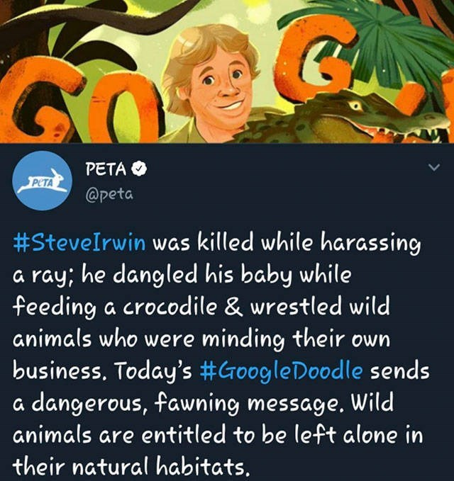 cringe - Text - PETA PETA @peta #Stevelrwin was killed while harassing ray; he dangled his baby while feeding a crocodile & wrestled wild animals who were minding their own business. Today's #GroogleDoodle sends a dangerous, fawning message. Wild animals are entitled to be left alone in their natural habitats.