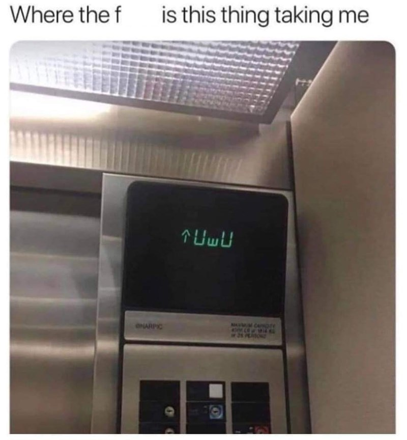 "Caption that reads, ""Where the f*ck is this thing taking me"" above a pic of the inside of an elevator; screen reads, ""UwU"""