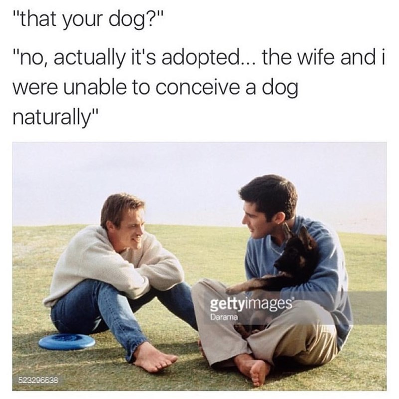 "Caption that reads, ""'That your dog?' 'No, actually it's adopted...the wife and I were unable to conceive a dog naturally'"" above a stock photo of two guys talking, one holding a puppy"