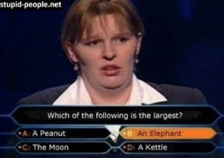News - stupid-people.net Which of the following is the largest? B An Elephant A: A Peanut C: The Moon D: A Kettle