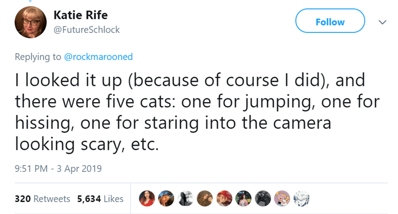 Text - Katie Rife Follow @FutureSchlock Replying to @rockmarooned I looked it up (because of course I did), and there were five cats: one for jumping, one for hissing, one for staring into the camera looking scary, etc. 9:51 PM - 3 Apr 2019 320 Retweets 5,634 Likes