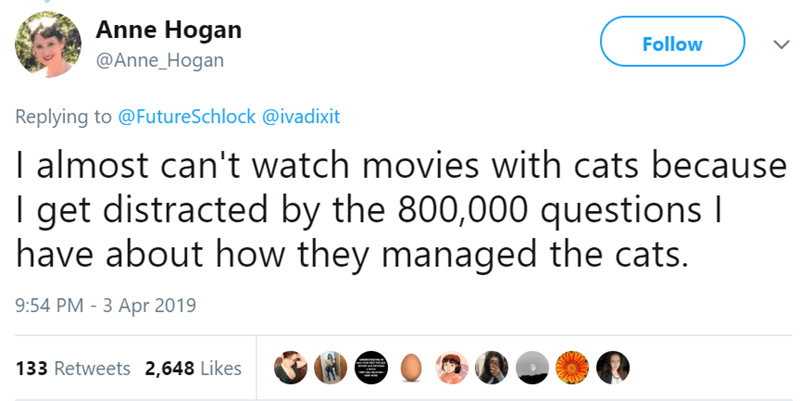 Text - Anne Hogan Follow @Anne_Hogan Replying to @FutureSchlock@ivadixit I almost can't watch movies with cats because I get distracted by the 800,000 questions I have about how they managed the cats. 9:54 PM 3 Apr 2019 133 Retweets 2,648 Likes