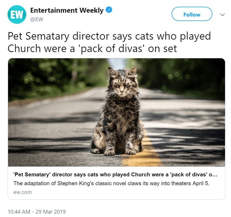 Cat - EW Entertainment Weekly Follow @EW Pet Sematary director says cats who played Church were a 'pack of divas' on set 'Pet Sematary' director says cats who played Church were a 'pack of divas' o... The adaptation of Stephen King's classic novel claws its way into theaters April 5 ew.com 10:44 AM 29 Mar 2019