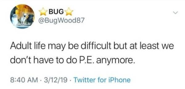 Text - BUG @BugWood87 Adult life may be difficult but at least we don't have to do P.E. anymore. 8:40 AM 3/12/19 Twitter for iPhone