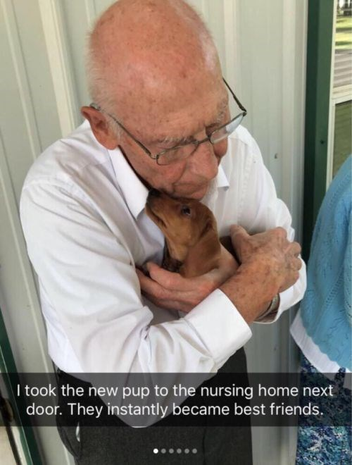 Nose - I took the new pup to the nursing home next door. They instantly became best friends.
