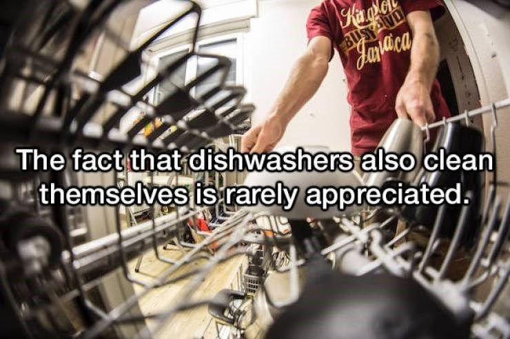 Engineering - Kar BUSY The fact that dishwashers alsoclean themselves is rarely appreciateds