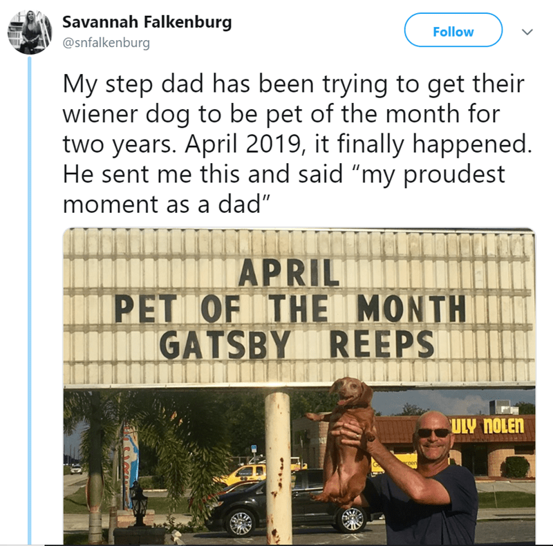 """Text - Savannah Falkenburg Follow @snfalkenburg My step dad has been trying to get their wiener dog to be pet of the month for two years. April 2019, it finally happened. He sent me this and said """"my proudest moment as a dad"""" APRIL PET OF THE MONTH GATSBY REEPS ULY NOLEN coen"""