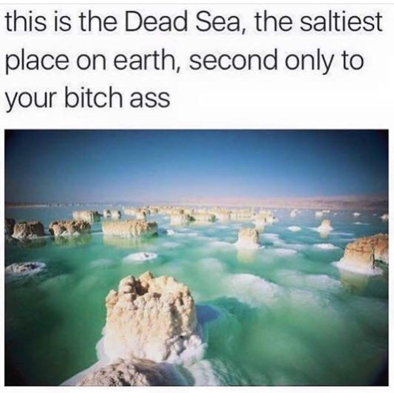 Water resources - this is the Dead Sea, the saltiest place on earth, second only to your bitch ass