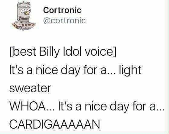 Text - Cortronic @cortronic [best Billy Idol voice] It's a nice day for a... light Sweater WHOA.. It's a nice day for a... CARDIGAAAAAN
