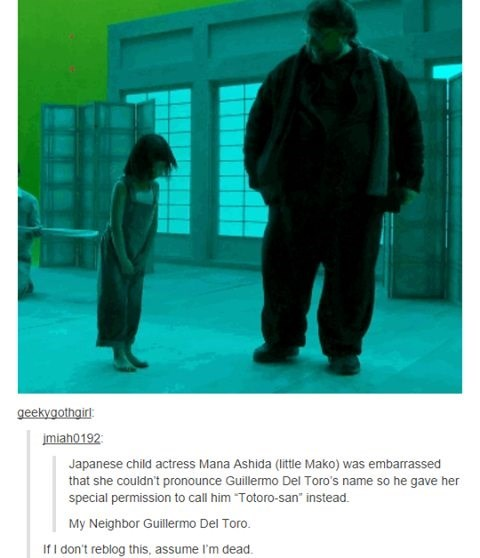 """Text - geekygothgirl jmiah0192 Japanese child actress Mana Ashida (little Mako) was embarrassed that she couldn't pronounce Guillermo Del Toro's name so he gave her special permission to call him """"Totoro-san"""" instead My Neighbor Guillermo Del Toro. If I don't reblog this, assume I'm dead"""