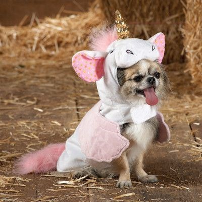 unicorn costume - Dog clothes