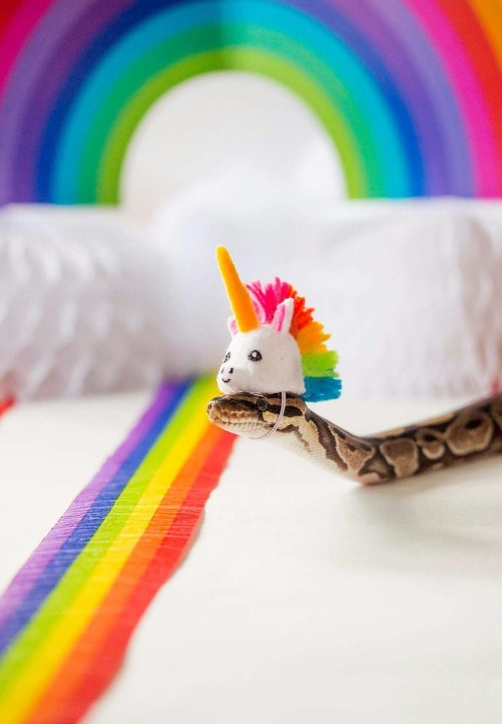 unicorn costume - Rainbow