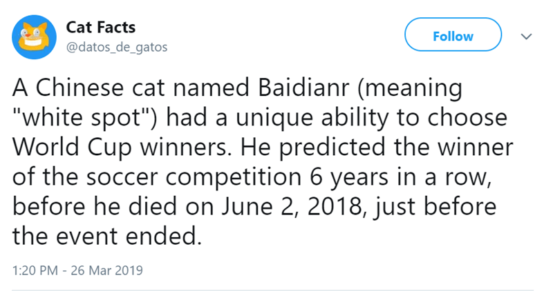 """Text - Cat Facts Follow @datos_de_gatos A Chinese cat named Baidianr (meaning """"white spot"""") had a unique ability to choose World Cup winners. He predicted the winner of the soccer competition 6 years in a row, before he died on June 2, 2018, just before the event ended. 1:20 PM 26 Mar 2019"""