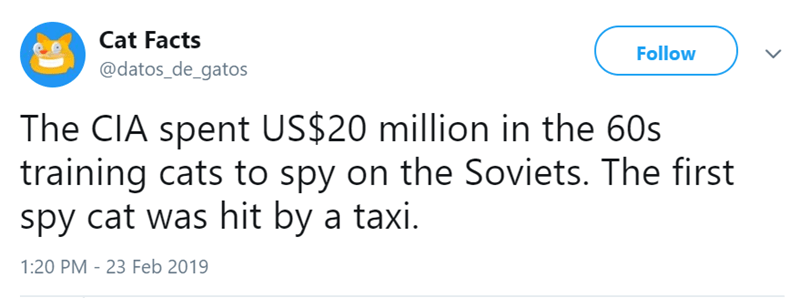 Text - Cat Facts Follow @datos_de_gatos The CIA spent US$20 million in the 60s training cats to spy on the Soviets. The first spy cat was hit by a taxi. 1:20 PM 23 Feb 2019