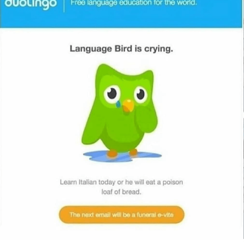Owl - OUotingo Free language education for the world Language Bird is crying. Learn Italian today or he will eat a poison loaf of bread. The next email will be a funeral e-vite