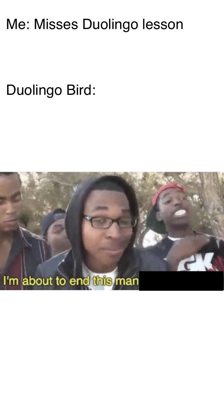 People - Me: Misses Duolingo lesson Duolingo Bird: CK I'm about to end this man