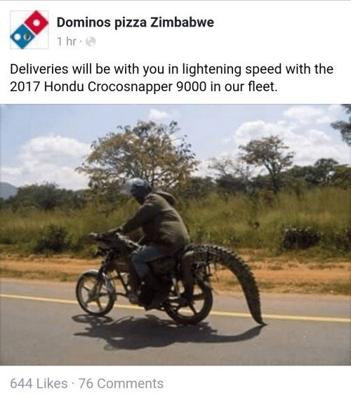 Motor vehicle - Dominos pizza Zimbabwe 1 hr Deliveries will be with you in lightening speed with the 2017 Hondu Crocosnapper 9000 in our fleet. 644 Likes 76 Comments