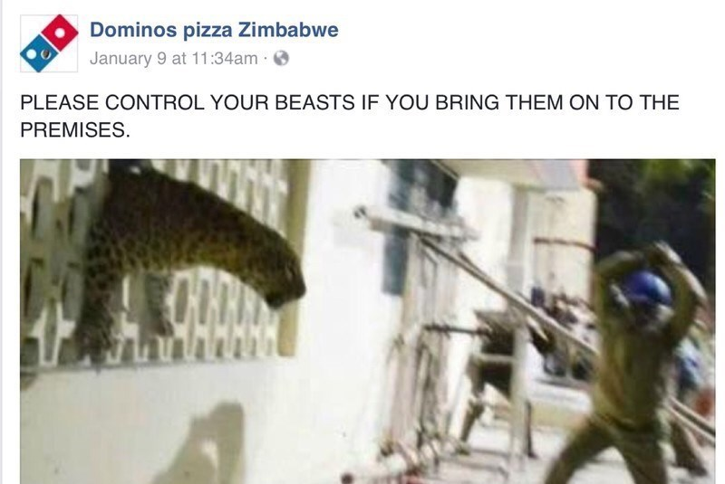 Adaptation - Dominos pizza Zimbabwe January 9 at 11:34am PLEASE CONTROL YOUR BEASTS IF YOU BRING THEM ON TO THE PREMISES.