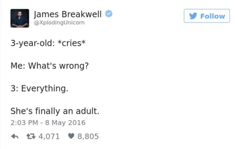 Text - James Breakwell Follow @XplodingUnicorn 3-year-old: *cries* Me: What's wrong? 3: Everything. She's finally an adult. 2:03 PM 8 May 2016 - t4,071 8,805
