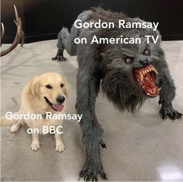 """Pic of a cute golden retriever that represents, """"Gordon Ramsay on BBC"""" sitting next a statue of a werewolf that represents, """"Gordon Ramsay on American TV"""""""