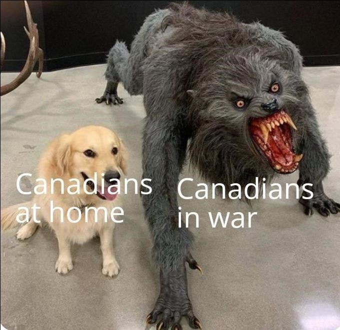 Dog - Canadlans Canadians at home in war