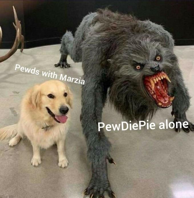 Dog - Pewds with Marzia PewDiePie alone