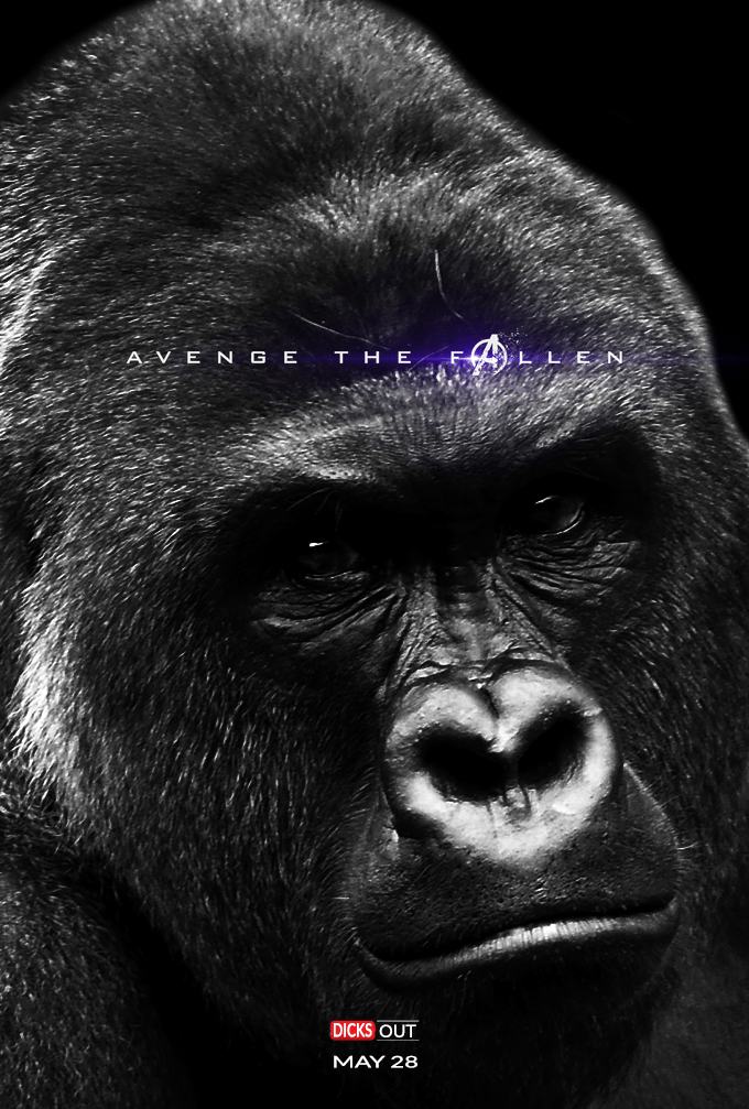 Western lowland gorilla - AVE N G e THE N 3AKE DICKS OUT MAY 28