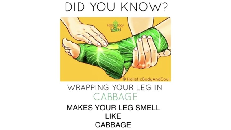 Text - Text - DID YOU KNOW? Holstic Body Sou @HolisticBodyAndSoul WRAPPING YOUR LEG IN CABBAGE MAKES YOUR LEG SMELL LIKE CABBAGE