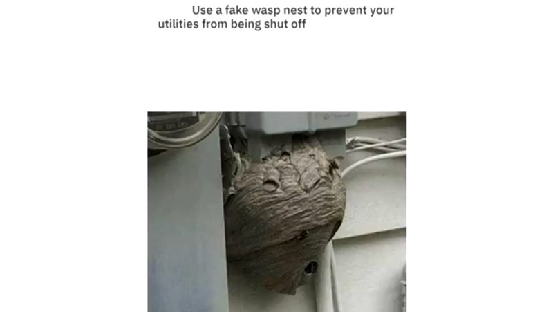 Wood - Use a fake wasp nest to prevent your utilities from being shut off