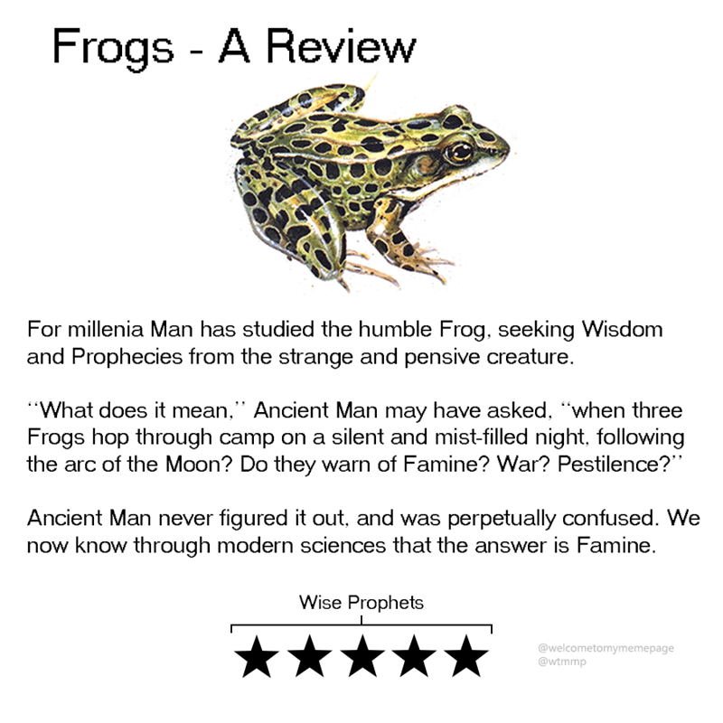 """Text - Frogs - A Review For millenia Man has studied the humble Frog, seeking Wisdom and Prophecies from the strange and pensive creature. """"What does it mean,"""" Ancient Man may have asked, """"when three Frogs hop through camp on a silent and mist-filled night, following the arc of the Moon? Do they warn of Famine? War? Pestilence? Ancient Man never figured it out, and was perpetually confused. We now know through modern sciences that the answer is Famine. Wise Prophets @welcometomymemepage @wtmmp"""