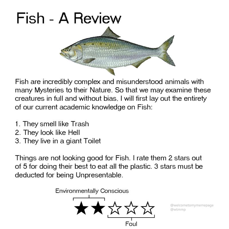 Fish - Fish - A Review _ Fish are incredibly complex and misunderstood animals with many Mysteries to their Nature. So that we may examine these creatures in full and without bias, I will first lay out the entirety of our current academic knowledge on Fish: 1. They smell like Trash 2. They look like Hell 3. They live in a giant Toilet Things are not looking good for Fish. I rate them 2 stars out of 5 for doing their best to eat all the plastic. 3 stars must be deducted for being Unpresentable. E