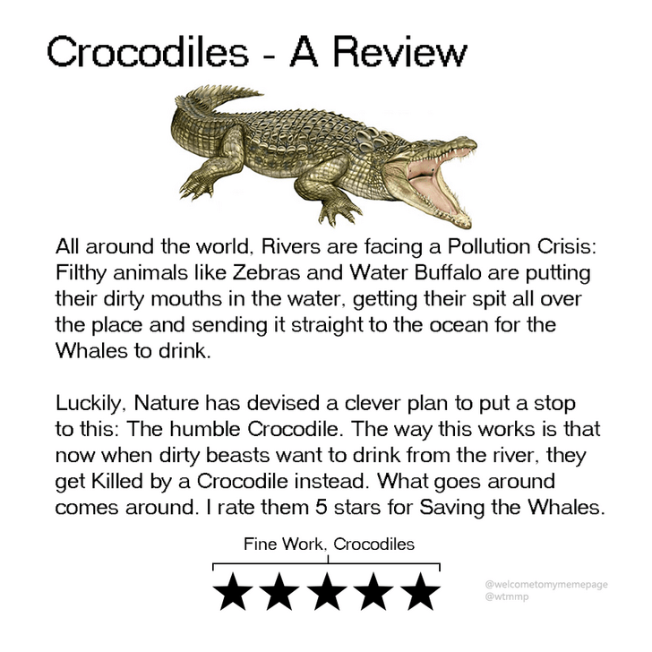 Text - Crocodiles - A Review All around the world, Rivers are facing a Pollution Crisis: Filthy animals like Zebras and Water Buffalo are putting their dirty mouths in the water, getting their spit all over the place and sending it straight to the ocean for the Whales to drink Luckily, Nature has devised a clever plan to put a stop to this: The humble Crocodile. The way this works is that now when dirty beasts want to drink from the river, they get Killed by a Crocodile instead. What goes around