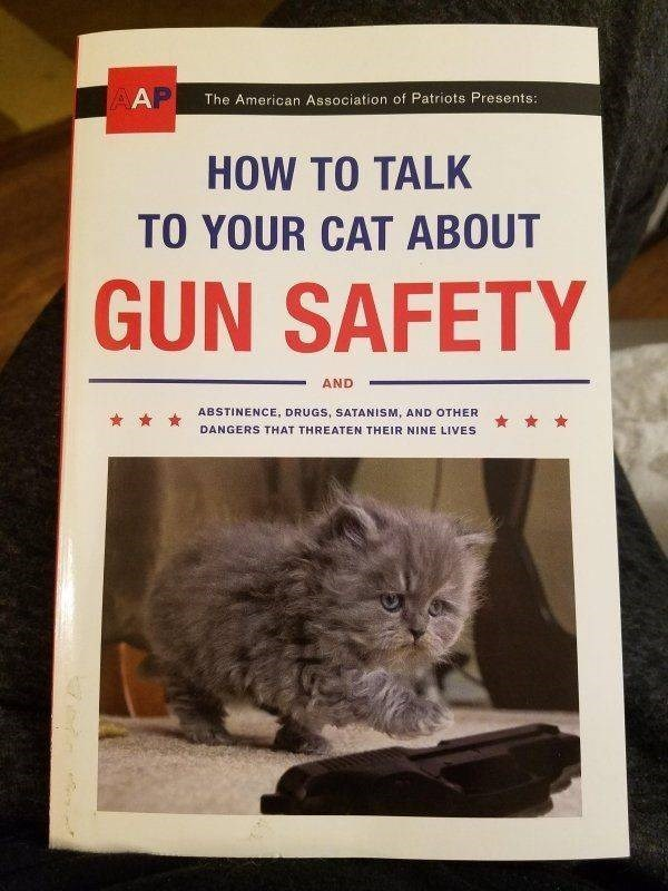 Cat - AAP The American Association of Patriots Presents: HOW TO TALK TO YOUR CAT ABOUT GUN SAFETY AND ABSTINENCE, DRUGS, SATANISM, AND OTHER DANGERS THAT THREATEN THEIR NINE LIVES