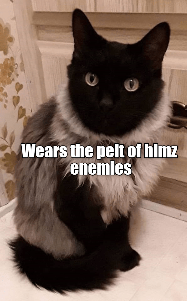 fur warrior cat meme - 9292021760