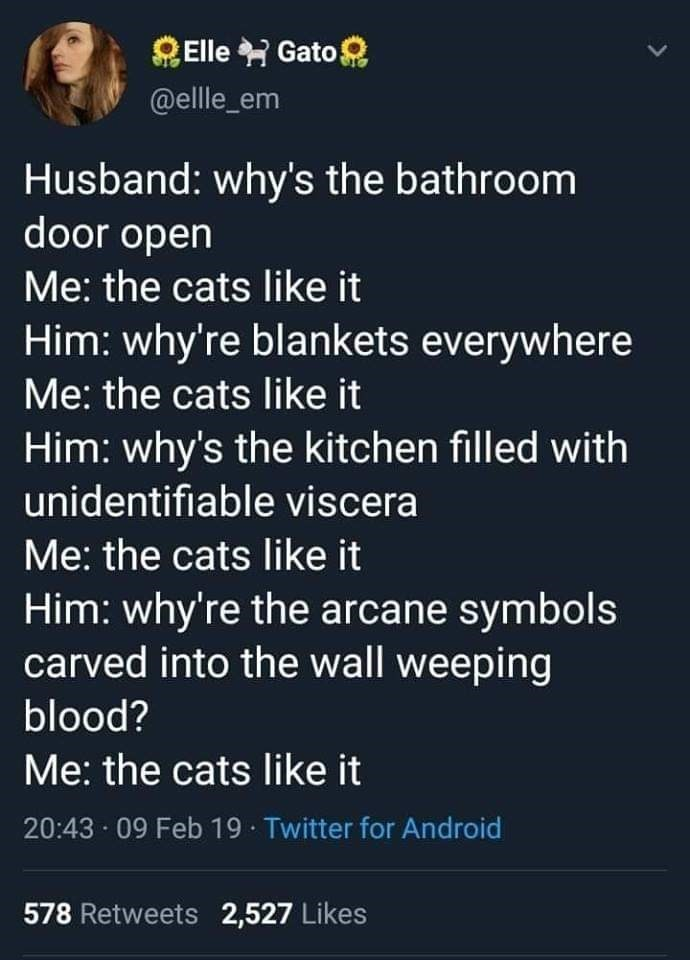 Text - Elle Gato @elle_em Husband: why's the bathroom door open Me: the cats like it Him: why're blankets everywhere Me: the cats like it Him: why's the kitchen filled with unidentifiable viscera Me: the cats like it Him: why're the arcane symbols carved into the wall weeping blood? Me: the cats like it 20:43 09 Feb 19 Twitter for Android 578 Retweets 2,527 Likes