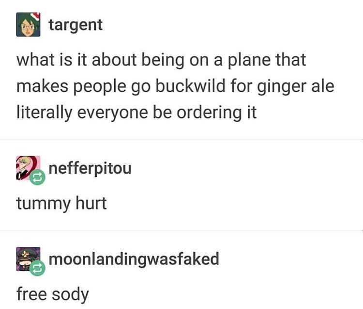 Text - targent what is it about being on a plane that makes people go buckwild for ginger ale literally everyone be ordering it nefferpitou tummy hurt moonlandingwasfaked free sody