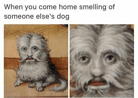 Text - When you come home smelling of someone else's dog