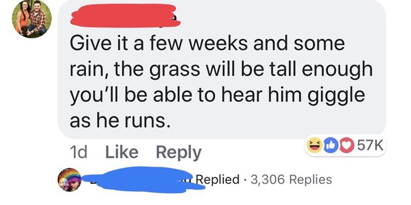 Text - Give it a few weeks and some rain, the grass will be tall enough you'll be able to hear him giggle as he runs D57K 1d Like Reply Replied 3,306 Replies