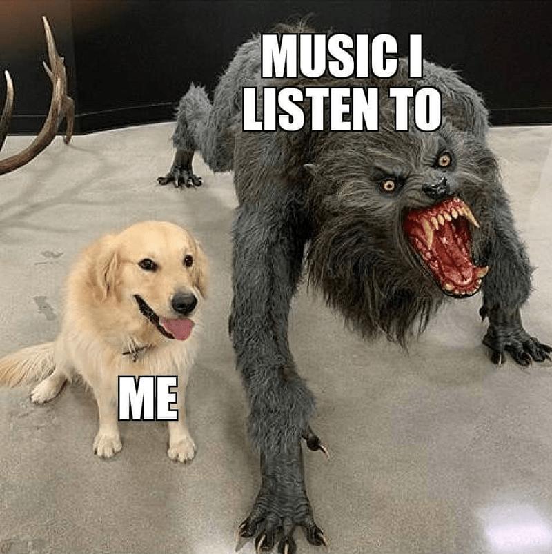 Dog - MUSICI LISTEN TO D ME YLRU